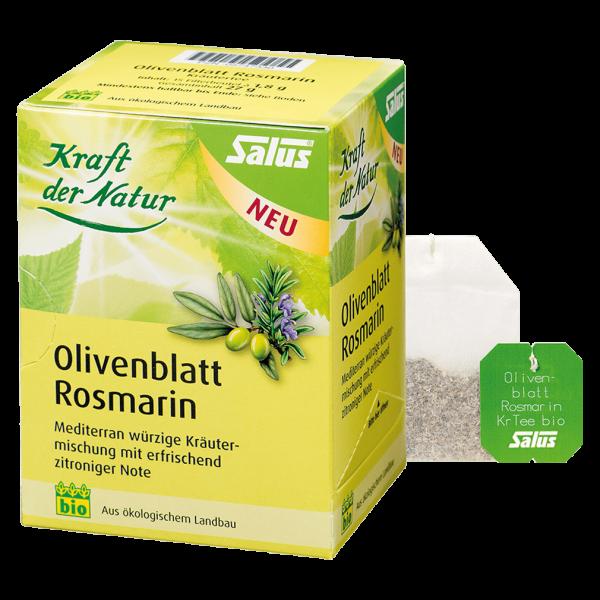 Salus Olivenblatt Rosmarin Tee Bio