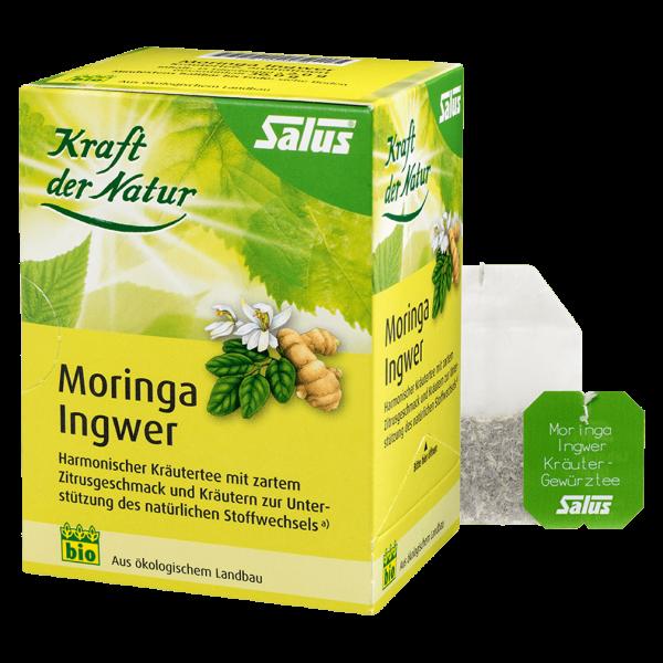 Salus Bio Moringa Ingwer Kräutertee