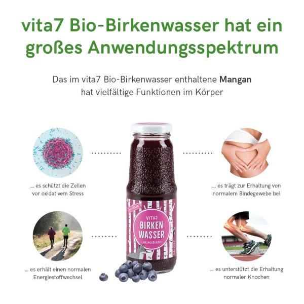 Bio Birkenwasser Heidelbeere