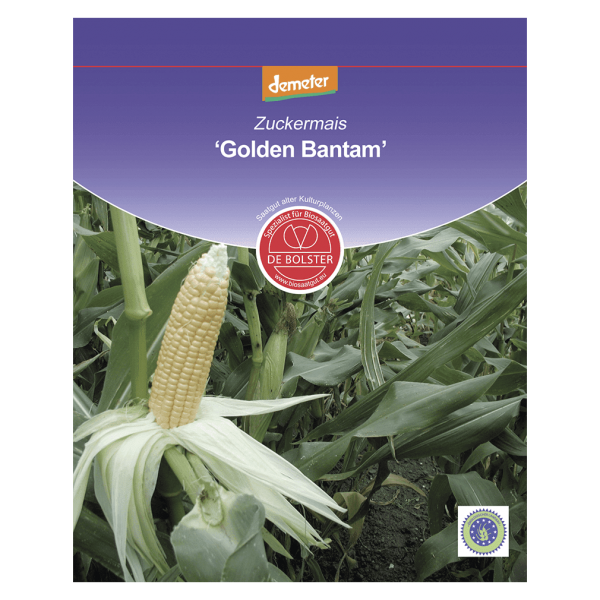 DE Bolster Bio Zuckermais, Golden Bantam