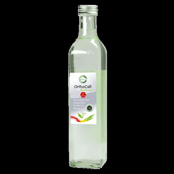 OrthoCell AG Balance H+ Lösung, 1 Liter