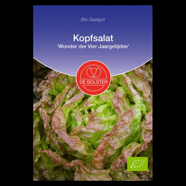 DE Bolster Bio Kopfsalat, Vier Jaargetijeden